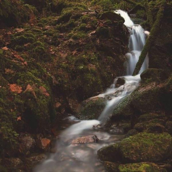 Fototours Schwarzwald Thema Wasserfall